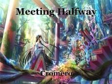 Meeting Halfway