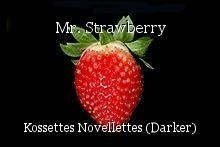 Mr. Strawberry