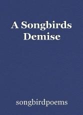 A Songbirds Demise