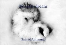 My cat's dream