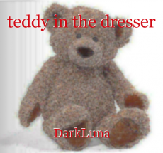 teddy in the dresser