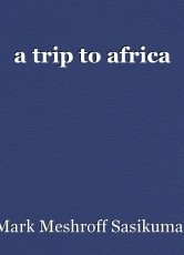 a trip to africa