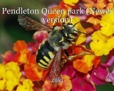 Pendleton Queen park (Newer version)