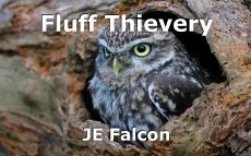 Fluff Thievery