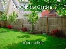 UFO in the Garden