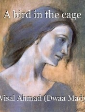 A bird in the cage