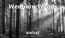Wedburn Woods
