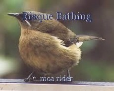 Risque Bathing