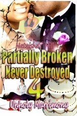 Partially Broken Never Destroyed IV