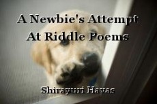 A Newbie's Attempt At Riddle Poems