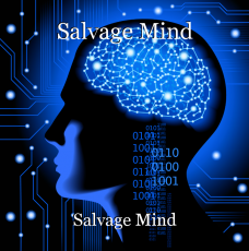 Salvage Mind