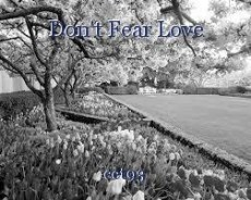 Don't Fear Love