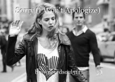 Sorry (I Won't Apologize)