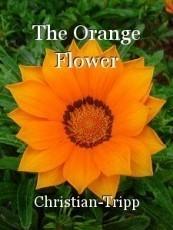 The Orange Flower