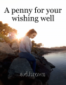 A penny for your wishing well