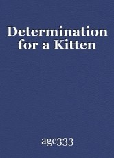 Determination for a Kitten