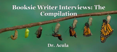 Booksie Writer Interviews : The Compilation