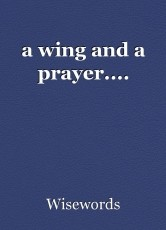 a wing and a prayer....