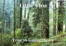 Little Vine