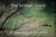 the broken bond