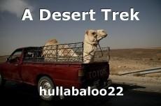 A Desert Trek