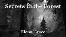 Secrets in the Forest