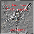 seraphim: Book 1: The Demon Box.