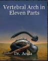Vertebral Arch in Eleven Parts