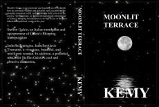 Moonlit Terrace