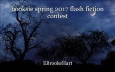 booksie spring 2017 flash fiction contest