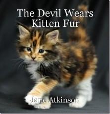 The Devil Wears Kitten Fur