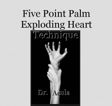 Five Point Palm Exploding Heart Technique