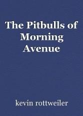 The Pitbulls of Morning Avenue