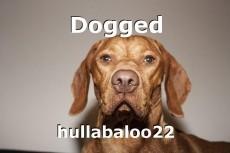 Dogged