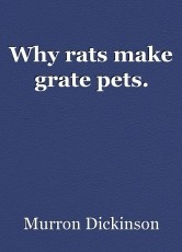 Why rats make grate pets.