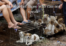 the heart of those who can not speak