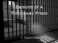 Memoirs Of A Throwaway Prison