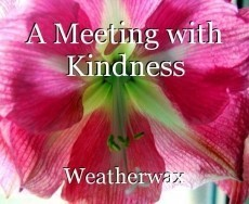 A Meeting with Kindness