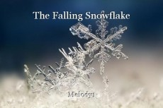 The Falling Snowflake