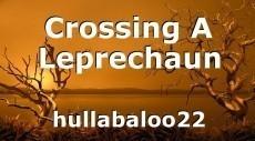 Crossing A Leprechaun