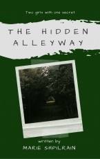 The Hidden Alleyway