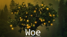 Woe: A Collaborative Novel