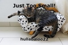 Just Too Small!