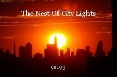 The Nest Of City Lights
