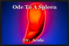 Ode To A Spleen