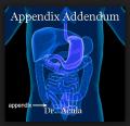 Appendix Addendum