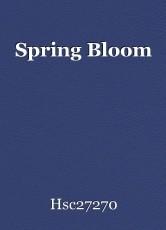 Spring Bloom