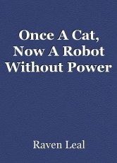 Once A Cat, Now A Robot Without Power