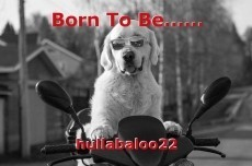 Born To Be......