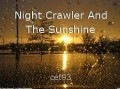 Night Crawler And The Sunshine